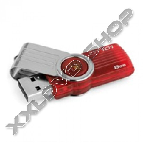 Link to KINGSTON Pendrive DataTraveler101 G2 8GB red